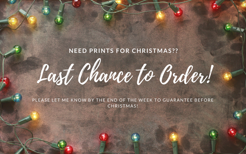 Last Chance For Christmas.Last Chance For Christmas Prints Charity Owen Photography